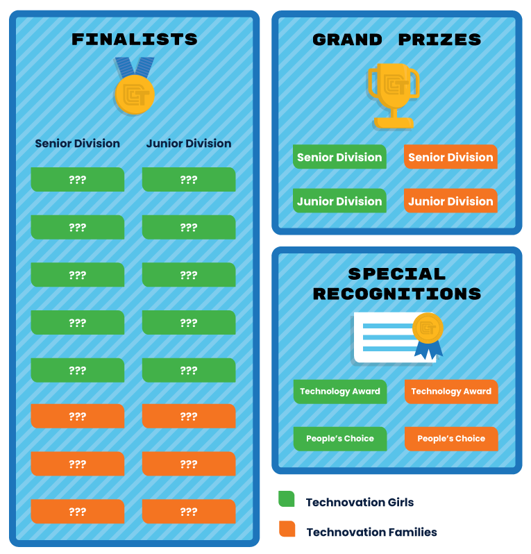 Technovation Global Award Structure